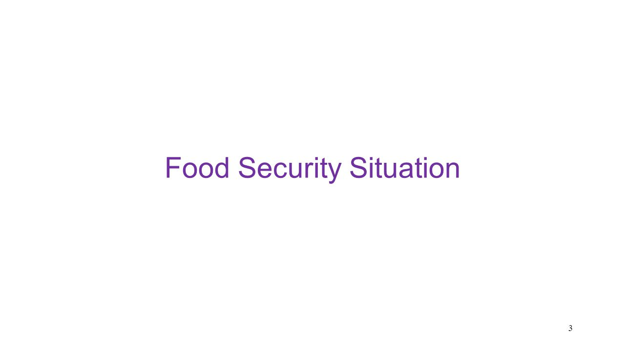 Food Security Situation 3