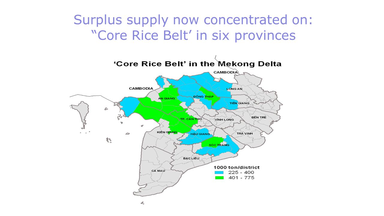 """Surplus supply now concentrated on: """"Core Rice Belt' in six provinces"""