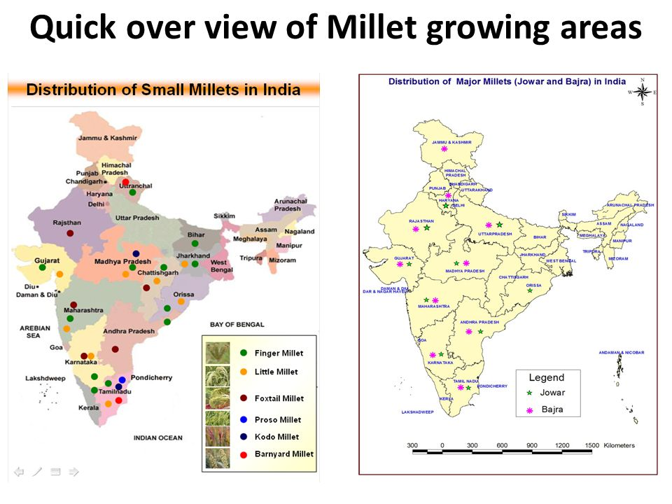Quick over view of Millet growing areas