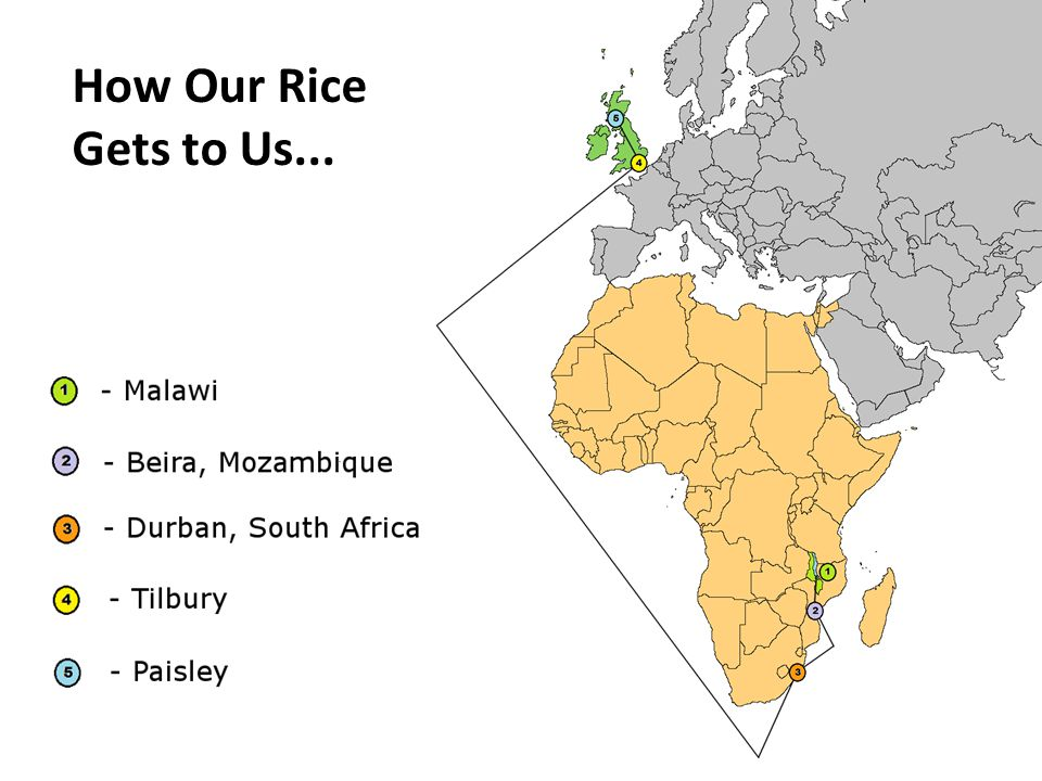 How Our Rice Gets to Us...