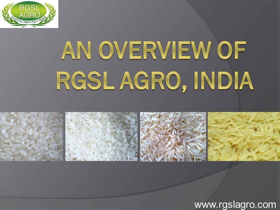 www.rgslagro.com