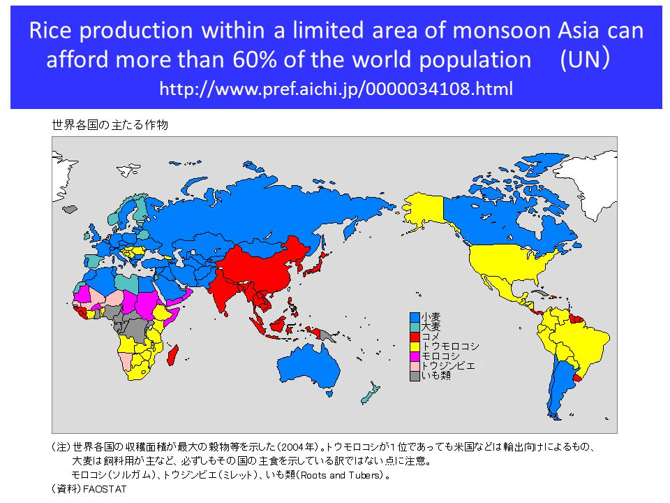 http://stlab.iis.utokyo.ac.jp/~wataru/publication/pdf/agropedia2006.pdf Rice paddy field distribution (MODIS)