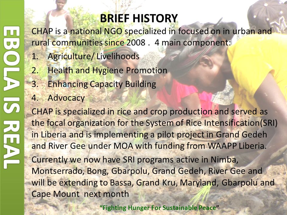 High quality seed production by farmers SRI Opportunities for Liberia 1 plant/hill eliminates danger of mixing varieties (length 1.4m/4'7 Purification of seeds /reconstruction of varieties Best plants selected by farmers for seeds Only 7 kg/ha of seeds required for 1 ha Multiplication factor for seed production: SRI x 1000 (6 kg seeds – 6 t/ha yield) Example: 1 kg seed, in Year 3: 167,000 ha Traditional x 100 (30 kg/ha seeds - 3 t/ha yield), Example: 1 kg seed, in Year 3: 333 ha Cambodia Non SRI SRI G.Gedeh Fighting Hunger For Sustainable Peace