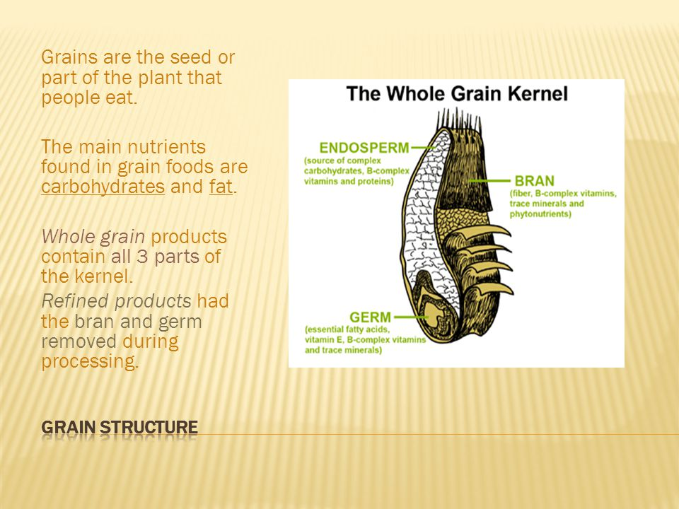 Grains are usually dried for storage Cooking grains with liquid rehydrates the grain and makes it tender and edible.