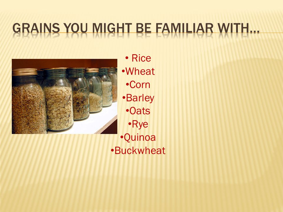 Rice Wheat Corn Barley Oats Rye Quinoa Buckwheat