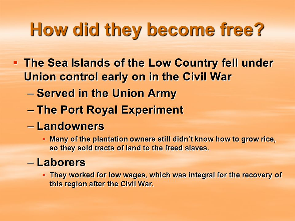 How did they become free?  The Sea Islands of the Low Country fell under Union control early on in the Civil War –Served in the Union Army –The Port