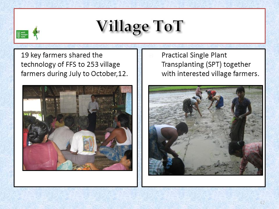 19 key farmers shared the technology of FFS to 253 village farmers during July to October,12.