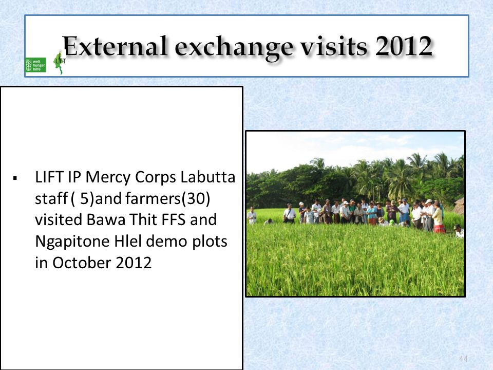  LIFT IP Mercy Corps Labutta staff ( 5)and farmers(30) visited Bawa Thit FFS and Ngapitone Hlel demo plots in October 2012 44