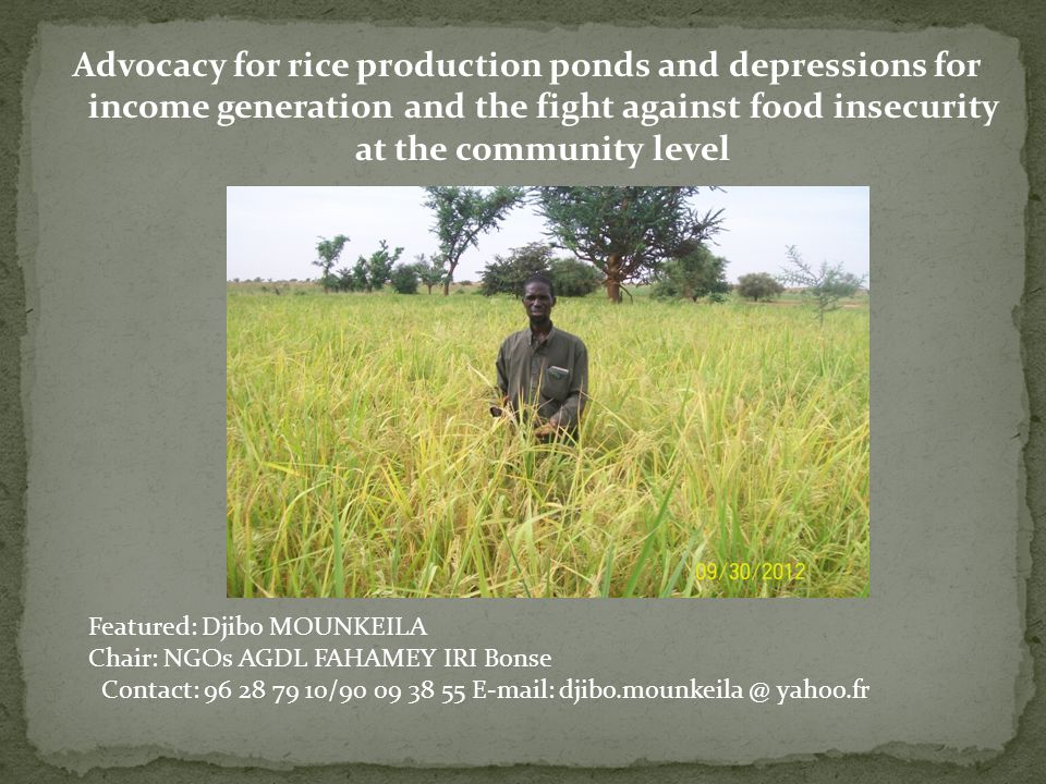Advocacy for rice production ponds and depressions for income generation and the fight against food insecurity at the community level Featured: Djibo MOUNKEILA Chair: NGOs AGDL FAHAMEY IRI Bonse Contact: 96 28 79 10/90 09 38 55 E-mail: djibo.mounkeila @ yahoo.fr