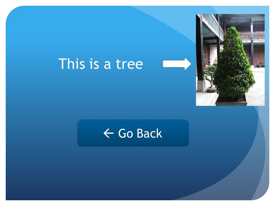 This is a tree  Go Back