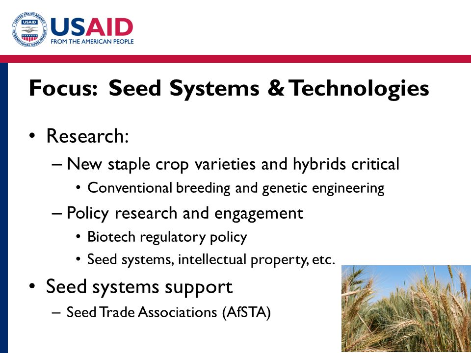 Focus: Seed Systems & Technologies Research: – New staple crop varieties and hybrids critical Conventional breeding and genetic engineering – Policy r