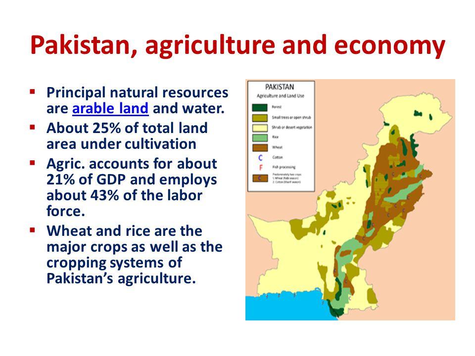 Technology Development Process  IARS  NARS - SSI  PARS  Farmers FMI (ABEI) Design/Febri., Testing (lab/field) Demonstration (Exp.