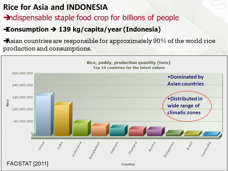  Rice is still the Main Components of Food Security (80% of national carbohydrate needs)  Paddy field in Indonesia (8,106,562 million ha (MoA, 2012))  40% Indonesian paddy field located in Java Island (60% of national food production)  Increasing of Demand (Quantity) + 1.5% / year  in 2025 : the need of rice in Indonesia is around 58.6 million tons (Dry Milled Rice) →12.91 million ha Paddy field  2010 – 2014: Target is to maintain self-sufficiency of 5 commodities (rice and corn, soybean, sugar, & meat)  Surplus target of rice : 10 million tons in 2014 Cont...
