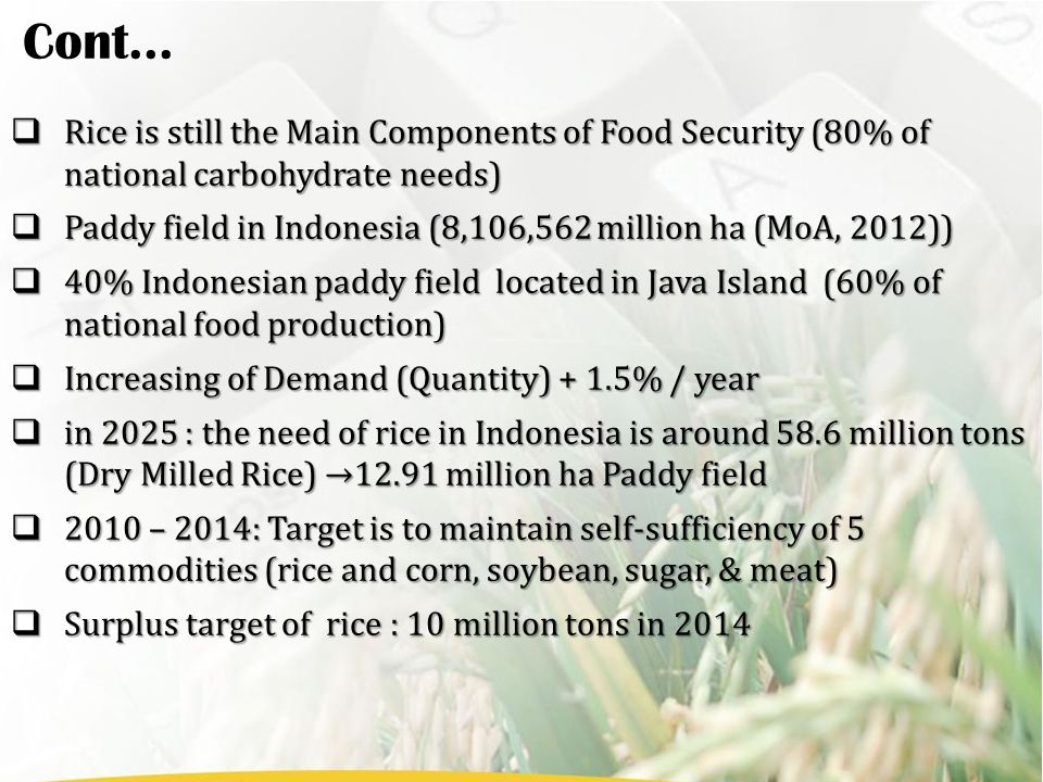  Rice is still the Main Components of Food Security (80% of national carbohydrate needs)  Paddy field in Indonesia (8,106,562 million ha (MoA, 2012))  40% Indonesian paddy field located in Java Island (60% of national food production)  Increasing of Demand (Quantity) + 1.5% / year  in 2025 : the need of rice in Indonesia is around 58.6 million tons (Dry Milled Rice) →12.91 million ha Paddy field  2010 – 2014: Target is to maintain self-sufficiency of 5 commodities (rice and corn, soybean, sugar, & meat)  Surplus target of rice : 10 million tons in 2014 Cont...