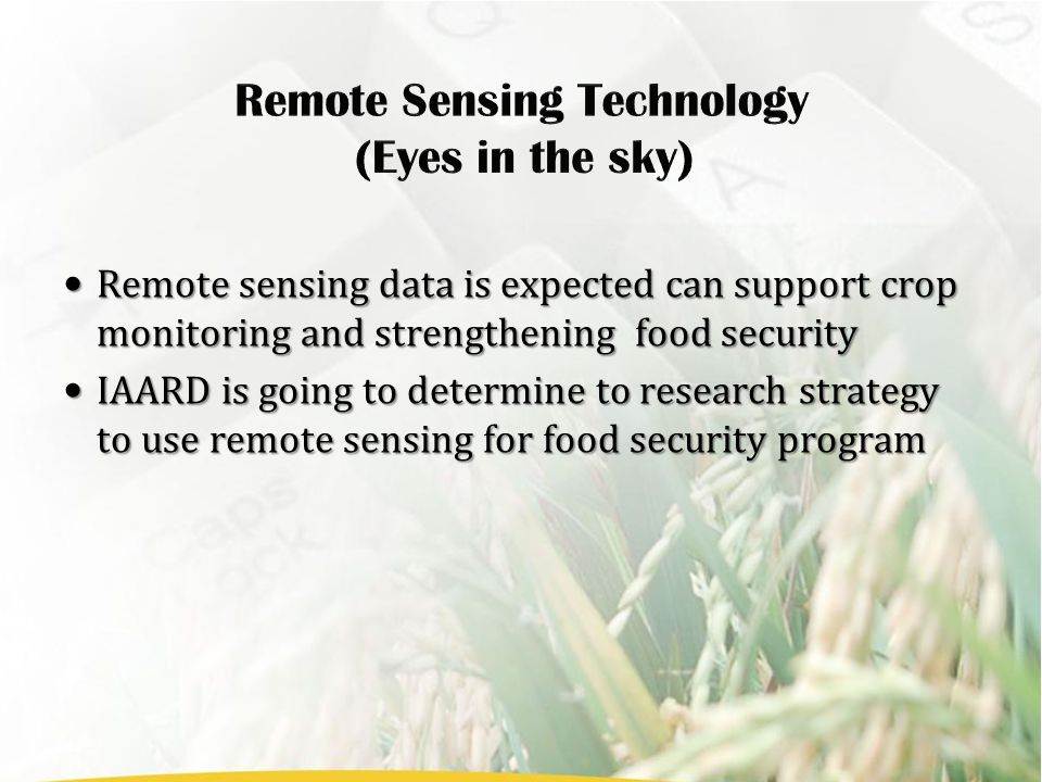 Remote sensing data is expected can support crop monitoring and strengthening food security Remote sensing data is expected can support crop monitorin