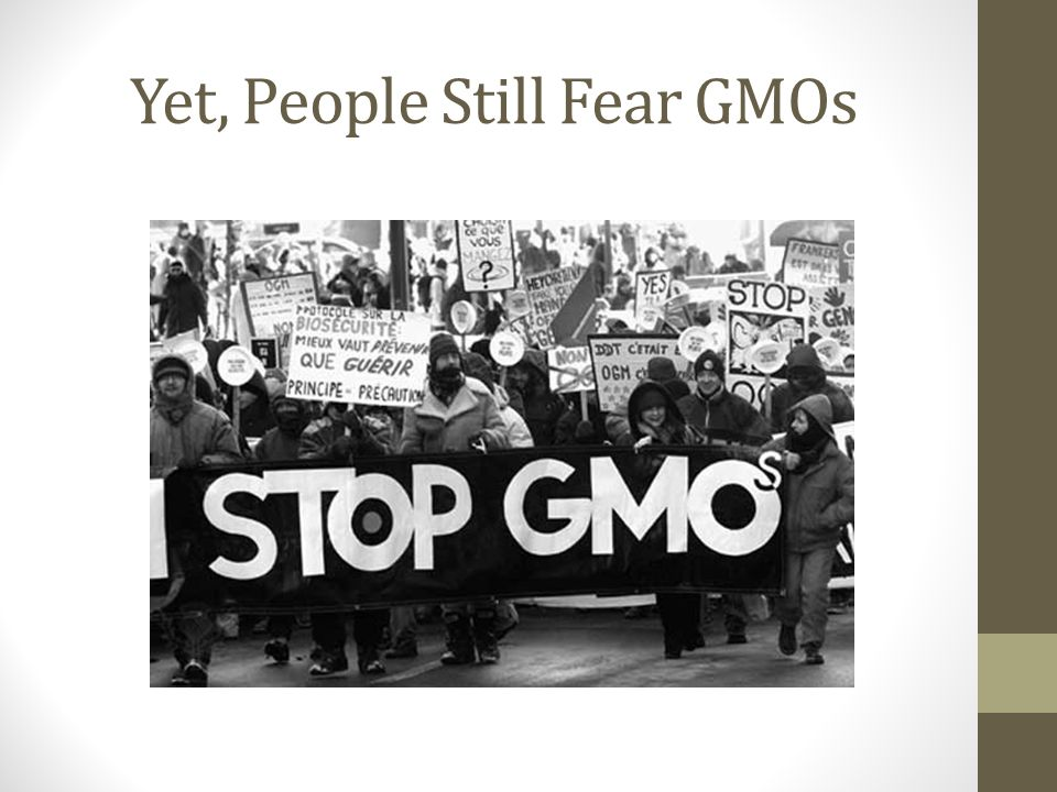 Counter-Protesting Certain pro-GMO groups have begun to protest at anti- GMO protests, offering another side to a one-sided conversation Handing out educational brochures and carrying banners that explain the scientific facts Scientist activism.