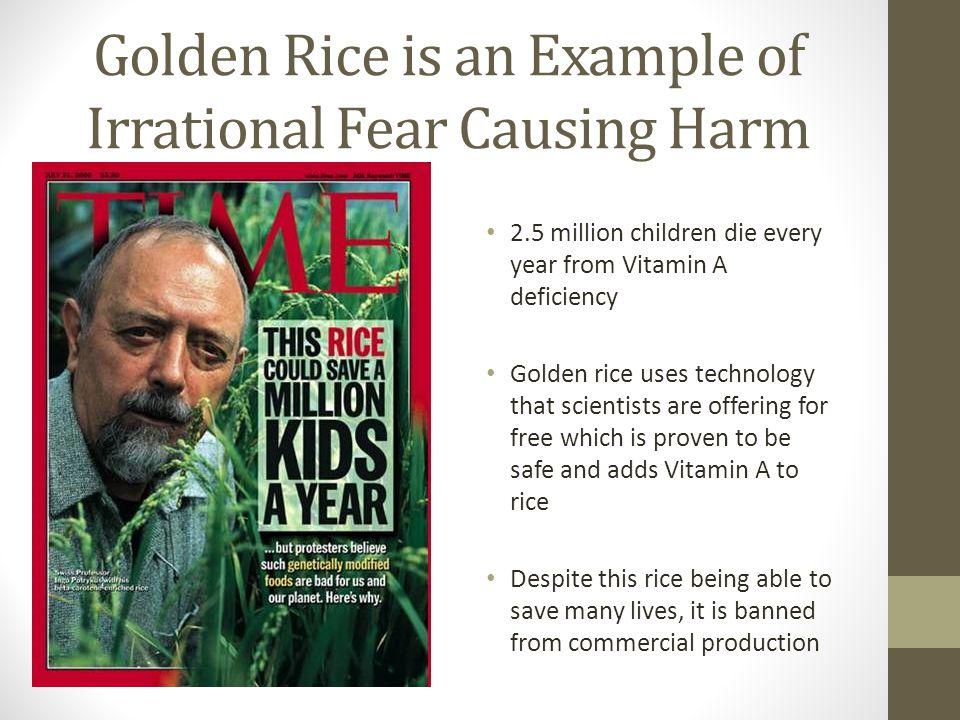 Golden Rice, contd.