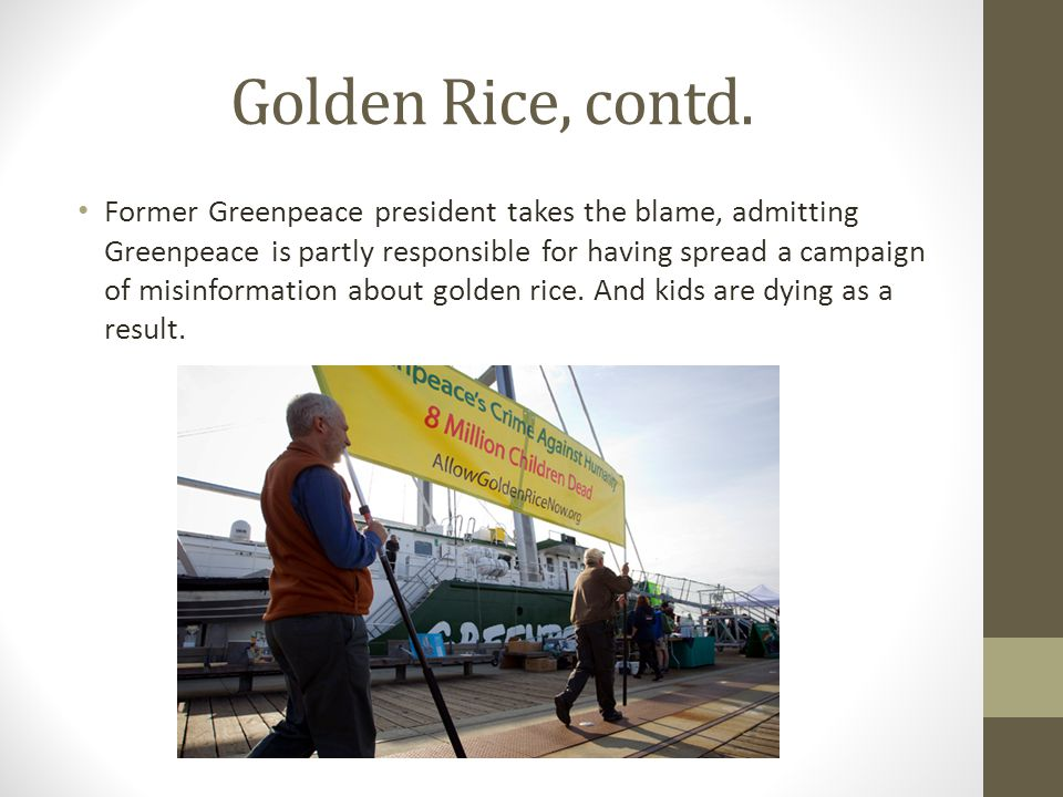 Golden Rice, contd. Former Greenpeace president takes the blame, admitting Greenpeace is partly responsible for having spread a campaign of misinforma