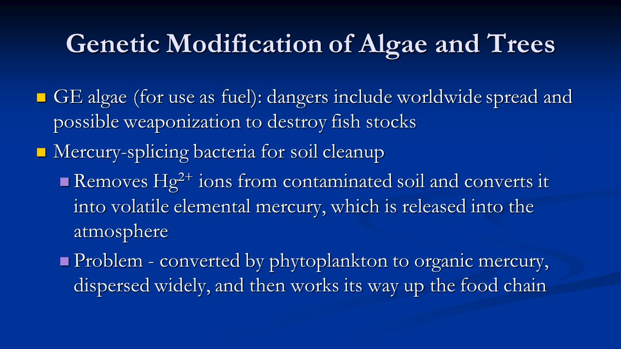 Genetic Modification of Algae and Trees GE algae (for use as fuel): dangers include worldwide spread and possible weaponization to destroy fish stocks GE algae (for use as fuel): dangers include worldwide spread and possible weaponization to destroy fish stocks Mercury-splicing bacteria for soil cleanup Mercury-splicing bacteria for soil cleanup Removes Hg 2+ ions from contaminated soil and converts it into volatile elemental mercury, which is released into the atmosphere Removes Hg 2+ ions from contaminated soil and converts it into volatile elemental mercury, which is released into the atmosphere Problem - converted by phytoplankton to organic mercury, dispersed widely, and then works its way up the food chain Problem - converted by phytoplankton to organic mercury, dispersed widely, and then works its way up the food chain