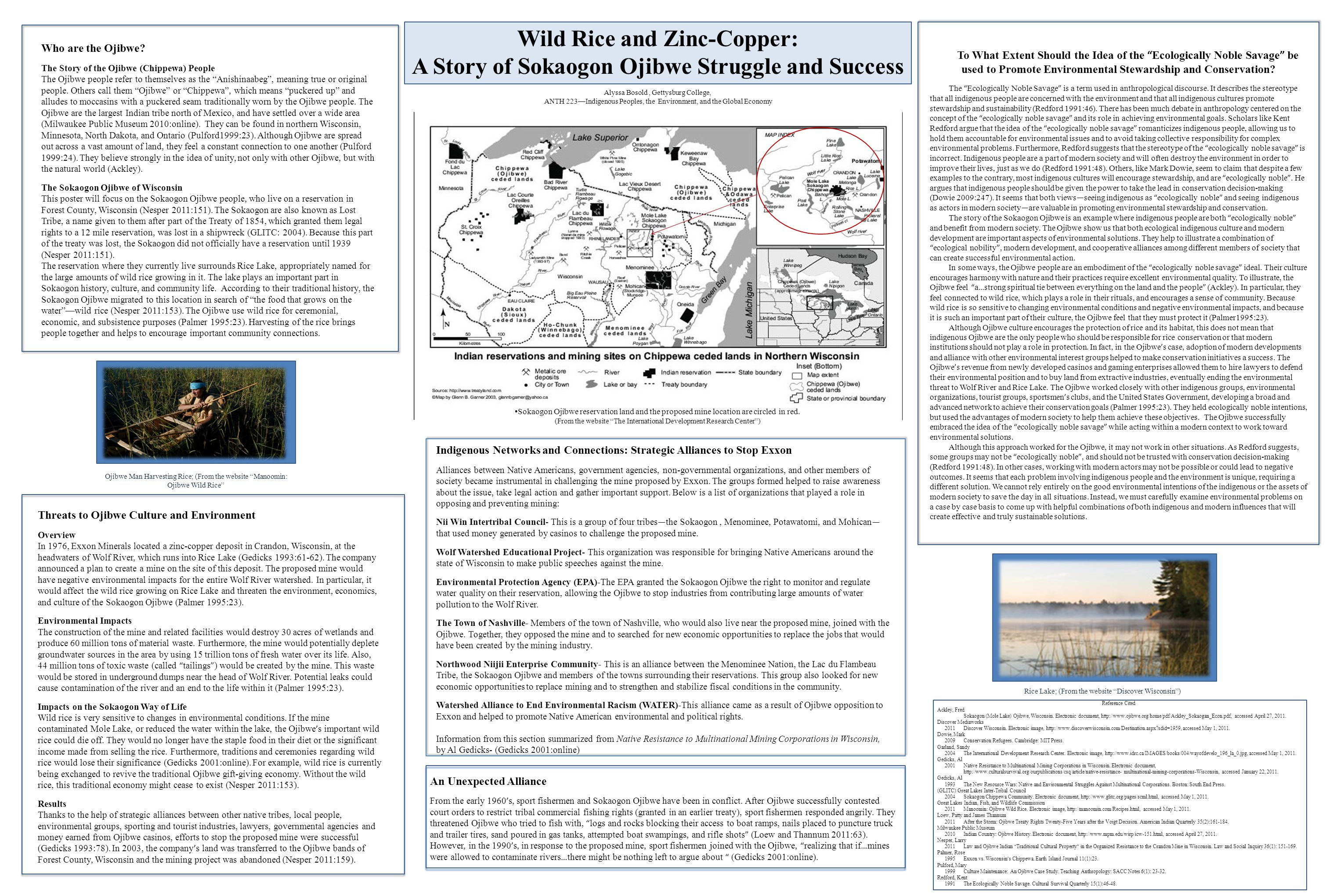 Wild Rice and Zinc-Copper: A Story of Sokaogon Ojibwe Struggle and Success Alyssa Bosold, Gettysburg College, ANTH 223—Indigenous Peoples, the Environ