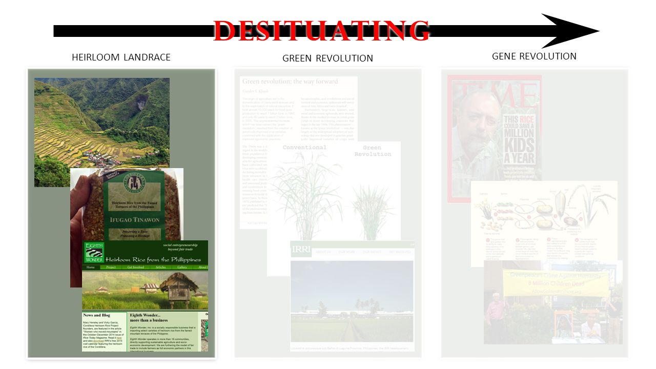 DESITUATING HEIRLOOM LANDRACE GREEN REVOLUTION GENE REVOLUTION
