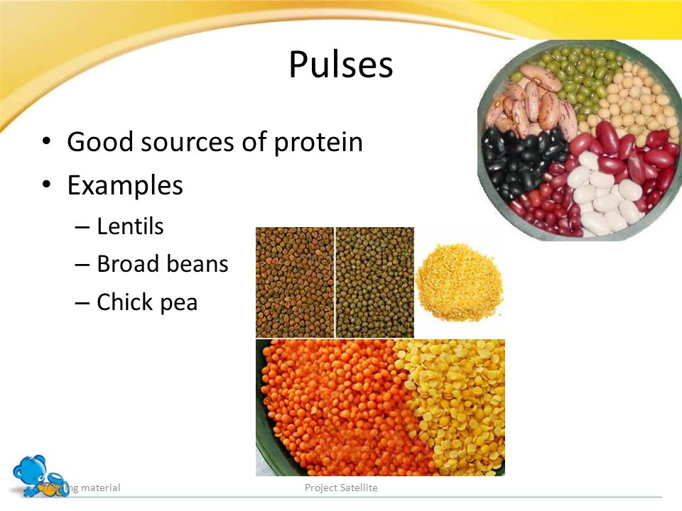 Pulses Good sources of protein Examples – Lentils – Broad beans – Chick pea Training materialProject Satellite