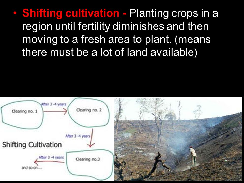 Shifting cultivation - Planting crops in a region until fertility diminishes and then moving to a fresh area to plant.