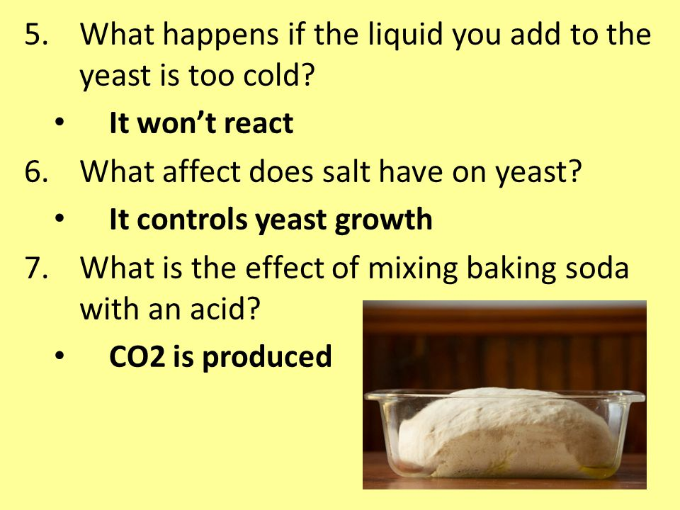 5.What happens if the liquid you add to the yeast is too cold.