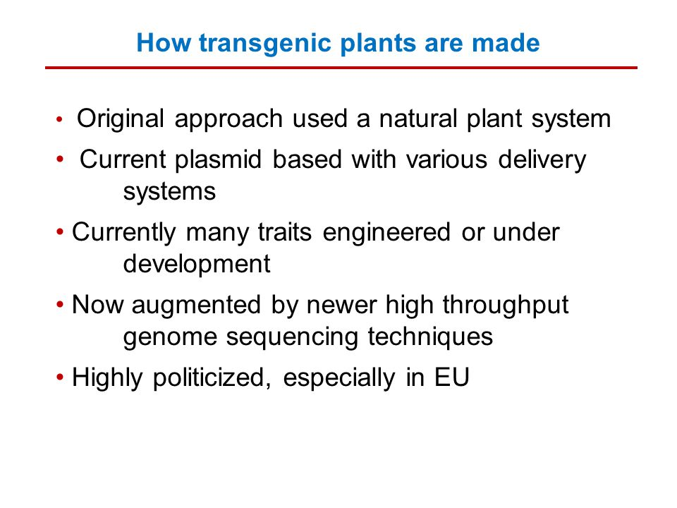 How transgenic plants are made Original approach used a natural plant system Current plasmid based with various delivery systems Currently many traits