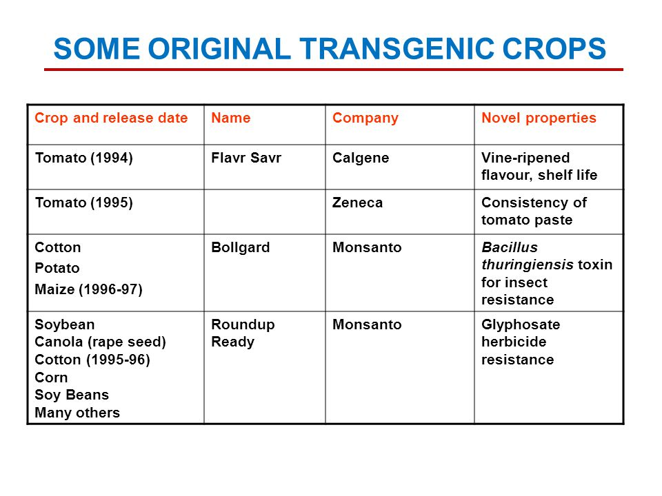 Crop and release dateNameCompanyNovel properties Tomato (1994)Flavr SavrCalgeneVine-ripened flavour, shelf life Tomato (1995)ZenecaConsistency of tomato paste Cotton Potato Maize (1996-97) BollgardMonsantoBacillus thuringiensis toxin for insect resistance Soybean Canola (rape seed) Cotton (1995-96) Corn Soy Beans Many others Roundup Ready MonsantoGlyphosate herbicide resistance SOME ORIGINAL TRANSGENIC CROPS