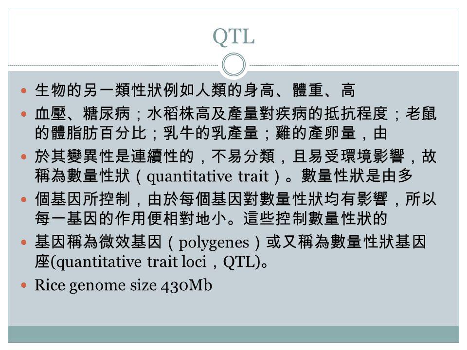 QTL 生物的另一類性狀例如人類的身高、體重、高 血壓、糖尿病;水稻株高及產量對疾病的抵抗程度;老鼠 的體脂肪百分比;乳牛的乳產量;雞的產卵量,由 於其變異性是連續性的,不易分類,且易受環境影響,故 稱為數量性狀( quantitative trait )。數量性狀是由多 個基因所控制,由於每個基因對數量性狀均有影響,所以 每一基因的作用便相對地小。這些控制數量性狀的 基因稱為微效基因( polygenes )或又稱為數量性狀基因 座 (quantitative trait loci , QTL) 。 Rice genome size 430Mb