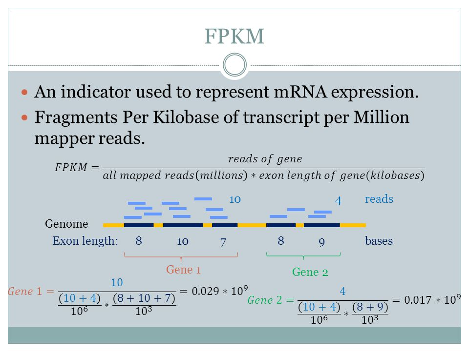 FPKM Before hypothesis testing, we have to get FPKM and variance of FPKM.
