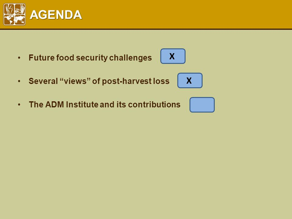 "AGENDA Future food security challenges Several ""views"" of post-harvest loss The ADM Institute and its contributions X X"