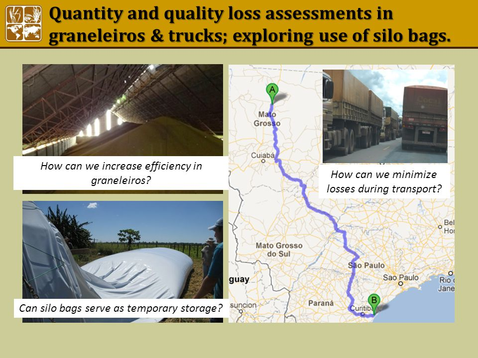 Quantity and quality loss assessments in graneleiros & trucks; exploring use of silo bags. How can we increase efficiency in graneleiros? Can silo bag