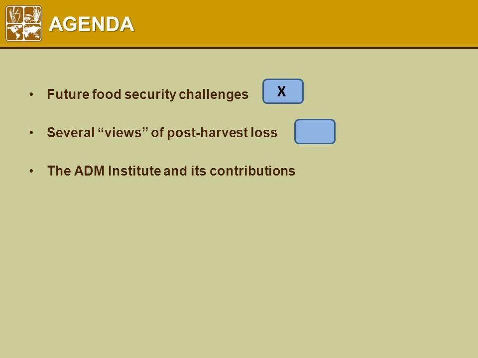"AGENDA Future food security challenges Several ""views"" of post-harvest loss The ADM Institute and its contributions X"