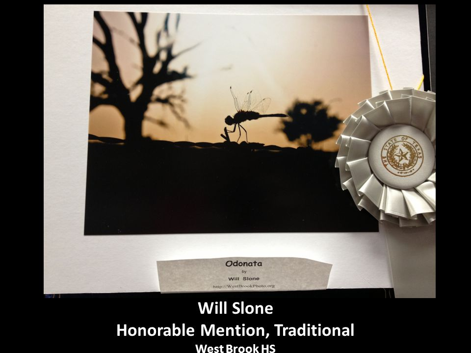 Will Slone Honorable Mention, Traditional West Brook HS