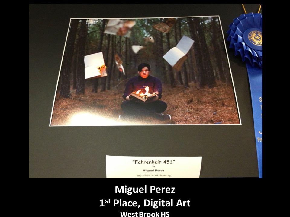 Miguel Perez 1 st Place, Digital Art West Brook HS