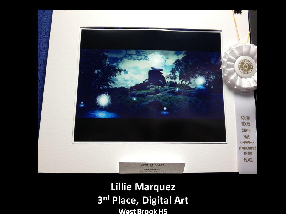 Lillie Marquez 3 rd Place, Digital Art West Brook HS