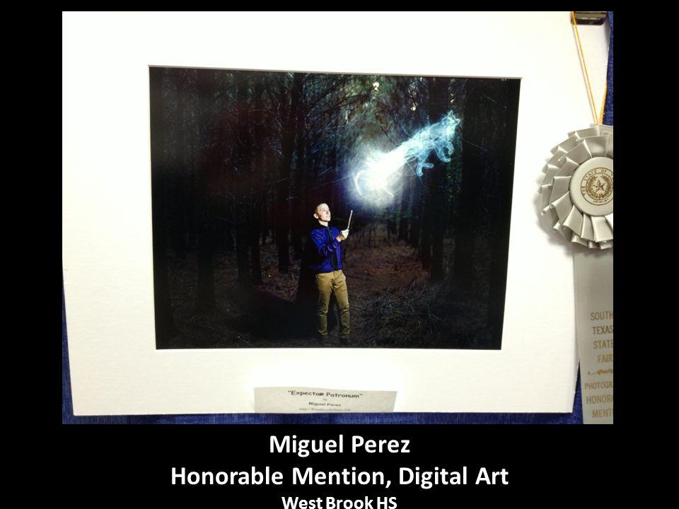 Miguel Perez Honorable Mention, Digital Art West Brook HS