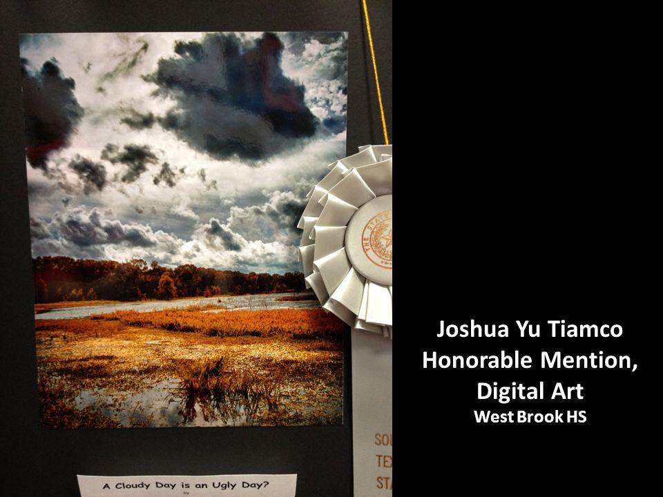 Joshua Yu Tiamco Honorable Mention, Digital Art West Brook HS