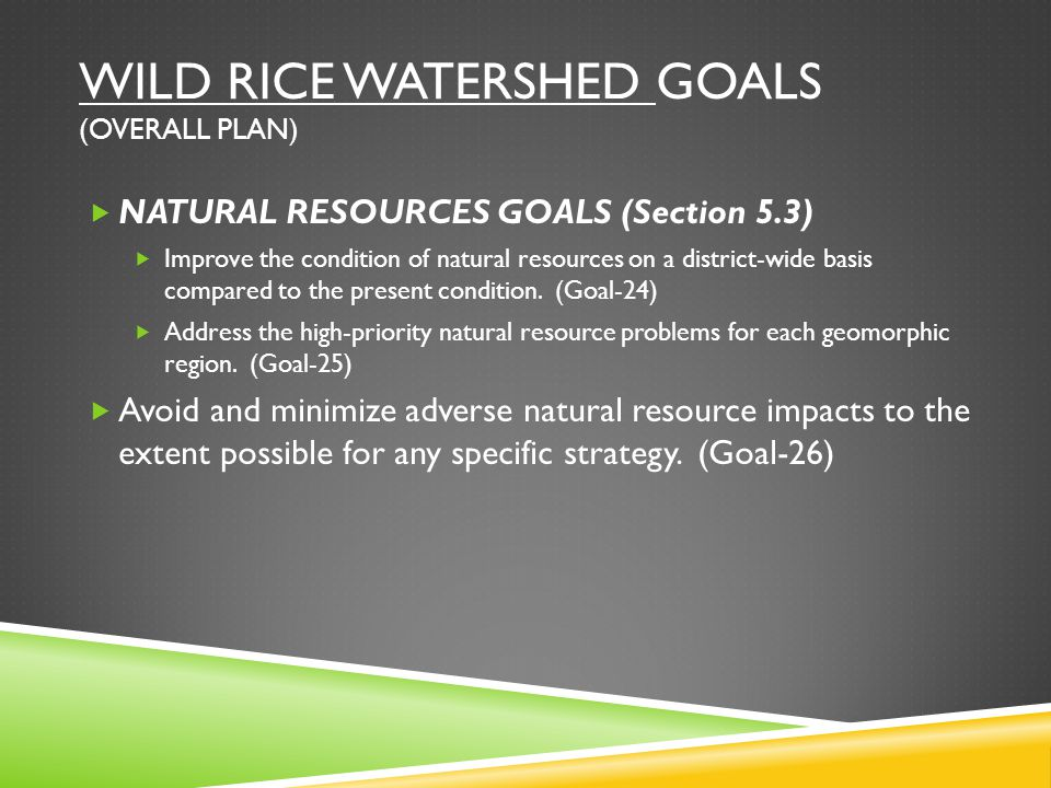 WILD RICE WATERSHED GOALS (OVERALL PLAN)  NATURAL RESOURCES GOALS (Section 5.3)  Improve the condition of natural resources on a district-wide basis compared to the present condition.