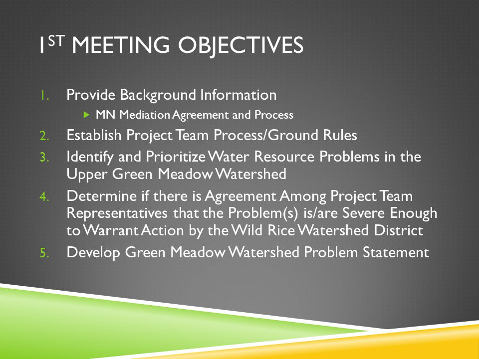 1 ST MEETING OBJECTIVES 1. Provide Background Information  MN Mediation Agreement and Process 2.