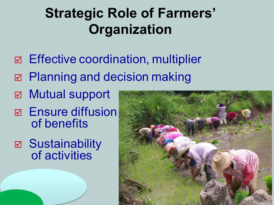 Strategic Role of Farmers' Organization  Effective coordination, multiplier  Planning and decision making  Mutual support  Ensure diffusion of ben