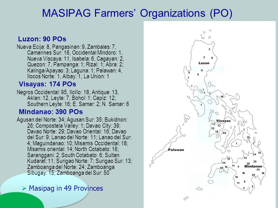 MASIPAG Farmers' Organizations (PO) Luzon: 90 POs Nueva Ecija: 8, Pangasinan: 9, Zambales: 7, Camarines Sur: 16, Occidental Mindoro: 1, Nueva Viscaya: 11, Isabela: 6, Cagayan: 2, Quezon: 7, Pampanga: 1; Rizal: 1; Abra: 2; Kalinga/Apayao: 3; Laguna: 1; Palawan: 4, Ilocos Norte: 1, Albay: 1, La Union: 1 Visayas: 174 POs Negros Occidental: 95, Ilo ï lo: 18, Antique: 13, Aklan: 12, Leyte: 7, Bohol: 1; Capiz: 12; Southern Leyte: 16; E.