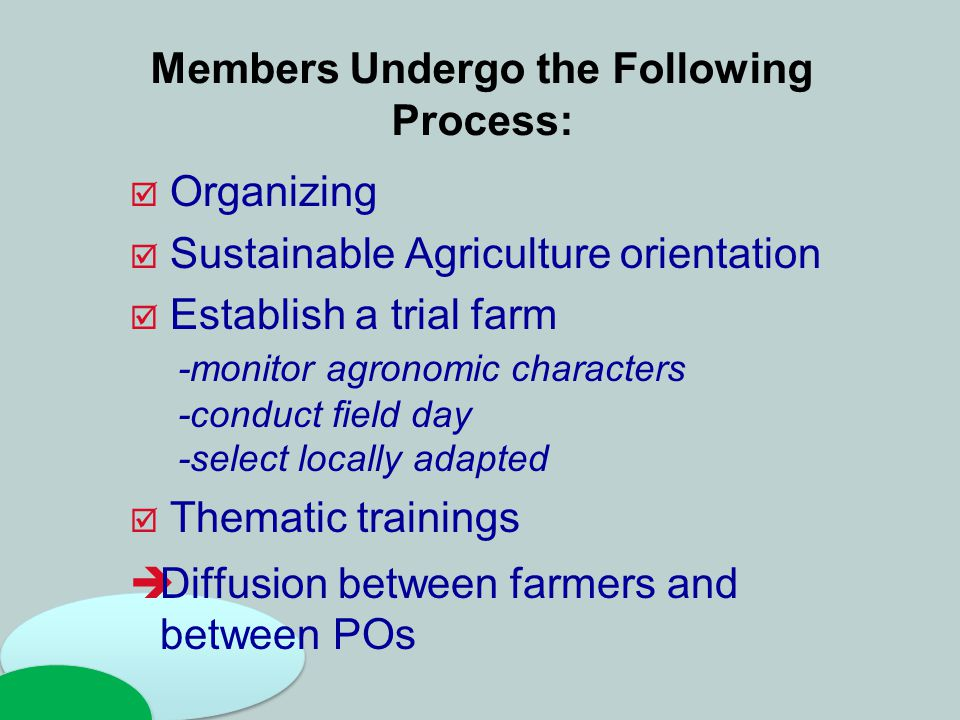 Members Undergo the Following Process:  Organizing  Sustainable Agriculture orientation  Establish a trial farm -monitor agronomic characters -cond