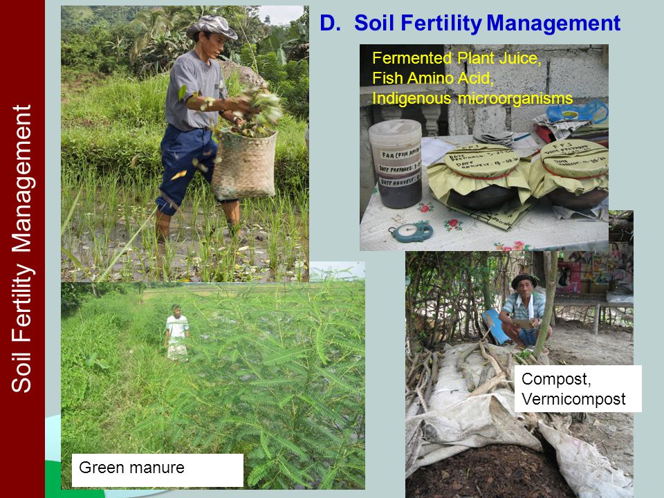 Green manure Compost, Vermicompost Soil Fertility Management D. Soil Fertility Management Fermented Plant Juice, Fish Amino Acid, Indigenous microorga