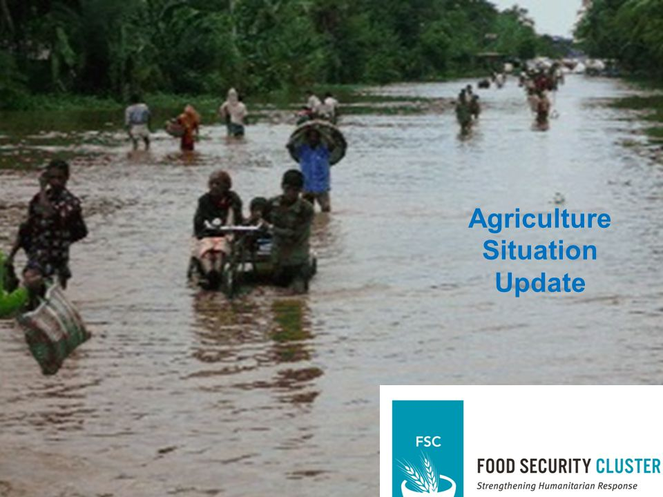 Assessment and Analysis Agriculture Situation Update