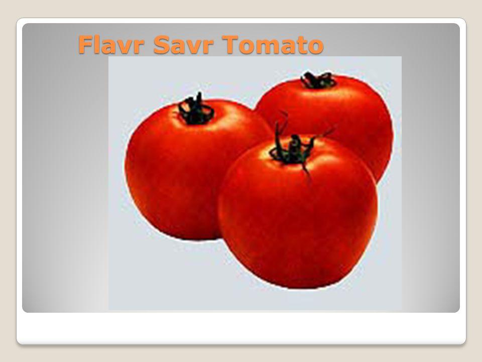 Flavr Savr Tomato