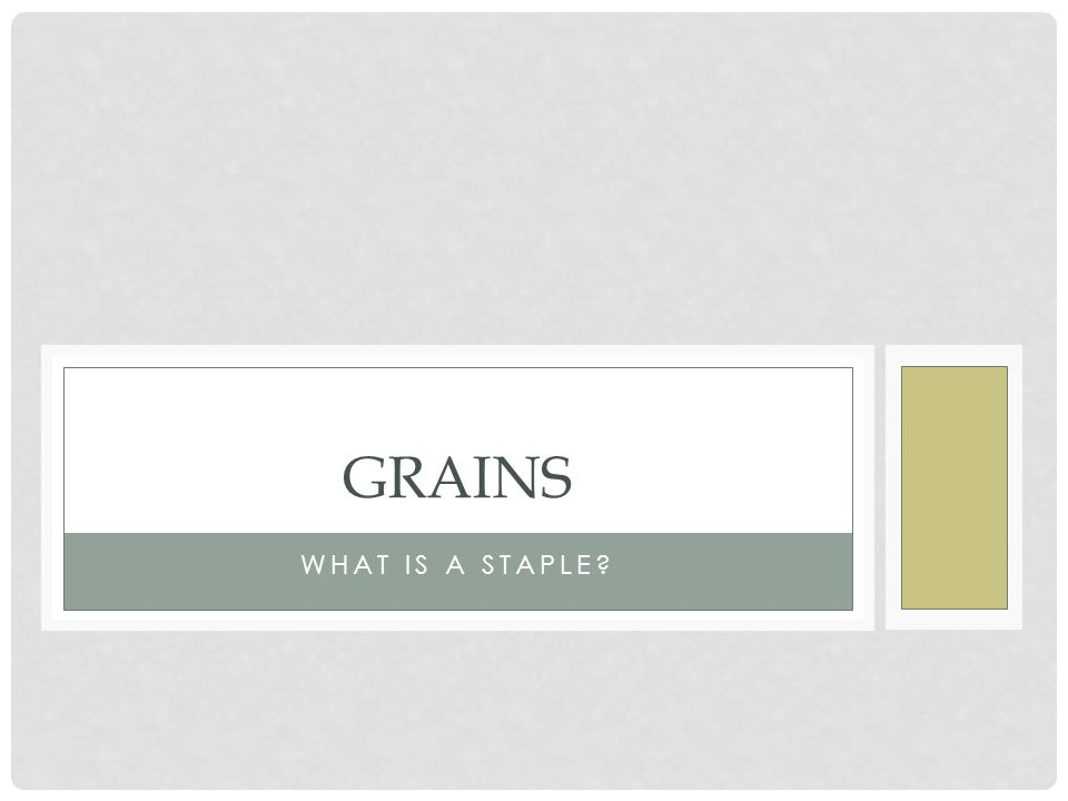 WHAT IS A STAPLE GRAINS