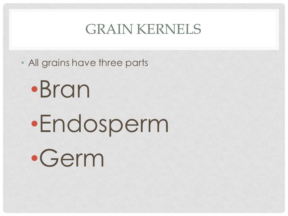 GRAIN KERNELS All grains have three parts Bran Endosperm Germ